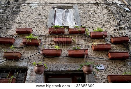 old Italian traditional Facade ornated with flower pots