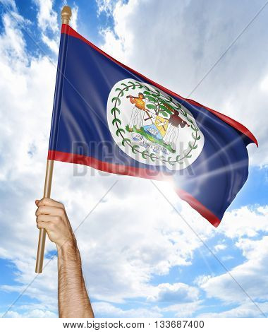 Person's hand holding the Belize national flag and waving it in the sky, 3D rendering