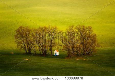 Little chapel in clump of trees among green meadows Moravia Ceska Republika