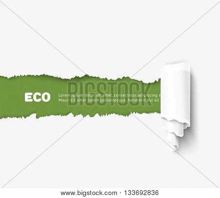 Vector torn paper with roll illustration, eco concept. Realistic torn paper for ecological design, banner for World environment day
