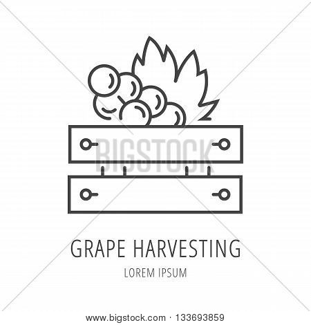 logo or label wine harvesting. Line style logotype template with grape. Easy to use business template. Vector abstract logo or emblem.