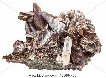 Brown Axinite Crystals And One Quartz Crystal