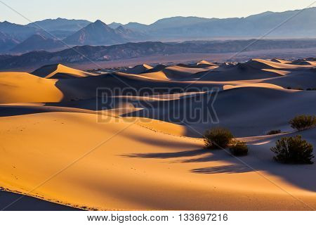 Smooth slopes of sand dunes. Early morning in Mesquite Flat Sand Dunes in California