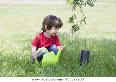 Little Boy Watering Plants Outdoors