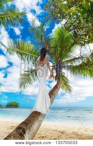 Young beautiful bride in white wedding dress on the palm tree on a tropical beach. Tropical sea in the background. Summer vacation concept.