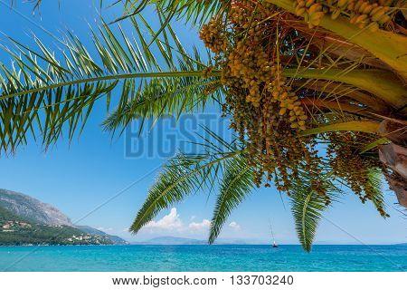 Landscape of the Greek island of Corfu