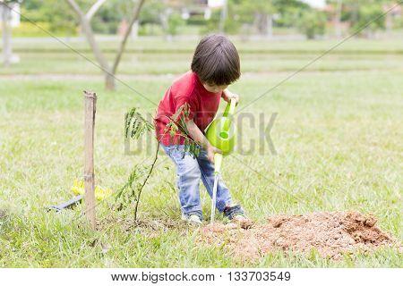 Portrait of Lovely Boy Enjoying Outdoors Boy Planting
