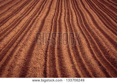 Freshly planted potato field in rural Prince Edward Island, Canada.