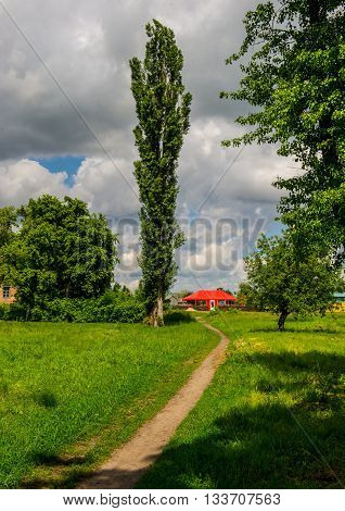 footpath in the countryside rural landscape spring