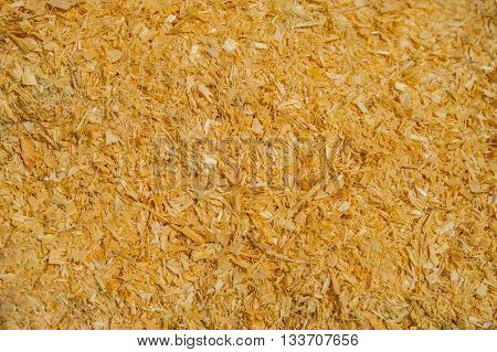 surface of wood shavings on a sunny day