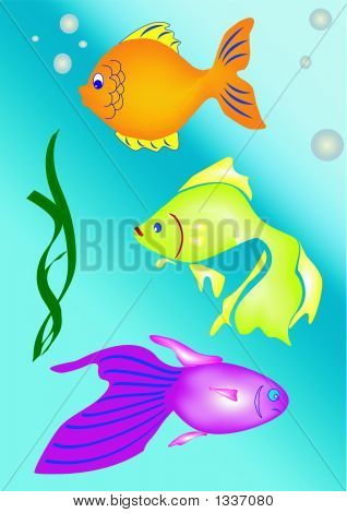 Fishes 1.Eps
