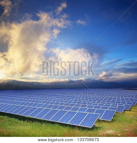 Solar panels with sunset's sky and green field