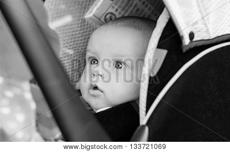 baby boy in car seat stares at the toy ( black and white )