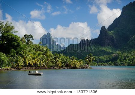 Boat in Cooks Bay with Moua Puta mountain in the background in a green jungle landscape on the tropical island of Moorea near Tahiti in the Pacific archipelago French Polynesia.
