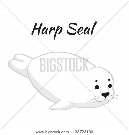 Cute baby seal isolated on white background. Vector illustration.