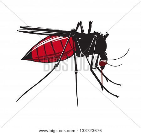 Mosquito drinks blood isolated on white background. Vector Illustration