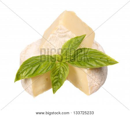 Brie cheese with a basil isolated on white background