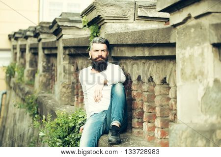 Handsome young stylish hipster man with long beard in white shirt outdoor sitting on stony fence with green plant