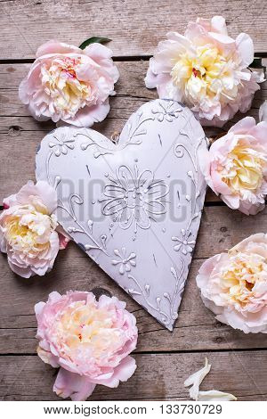 Tender pink peonies flowers and decorative heart on vintage wooden background. Flat lay. Selective focus.