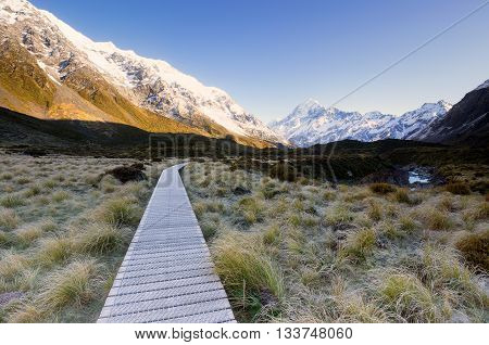 Wooden pathway provided for hikers to access the national park.