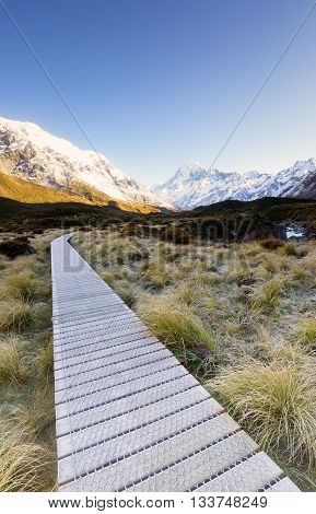 Wooden pathway provided for hikers exploring the national park.