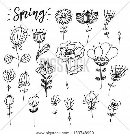 Hand drawn zentangle  flower composition. Vector elements for colorbooks. Ethnic mehendi tattoos.