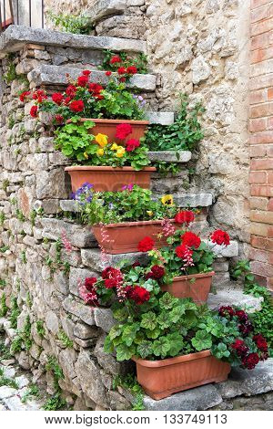 Flowerpots of colorful flowers growing on old exterior stone stairs outside an old stone townhouse in a close up view with red geraniums