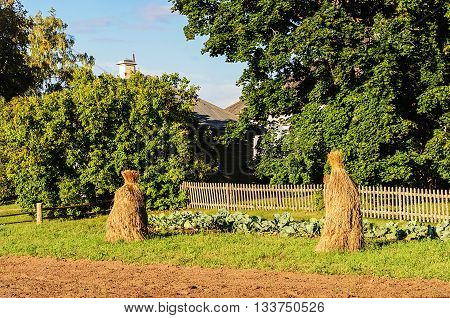 Bundles of hay in the vegetable garden at sunset. Mikhailovskoye village Pushkinskiye Gory Reserve Russia