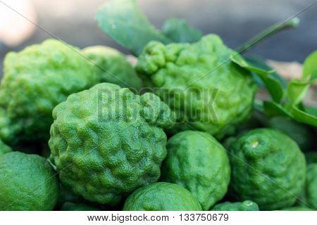 bergamot fruit on leaves,good herb and aromatherapy