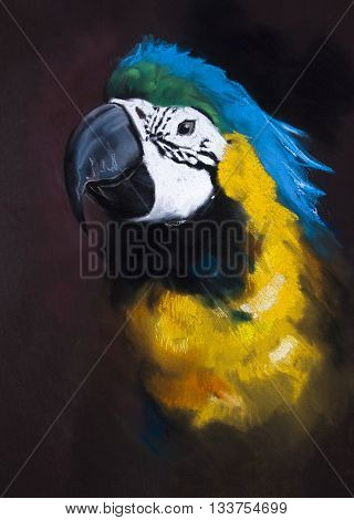 Parrot on a dark background. Modern art.