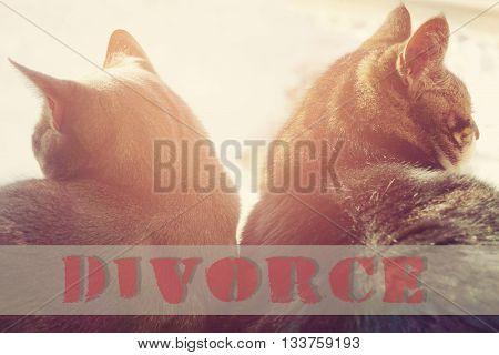 divorce concept - broken relationships with word