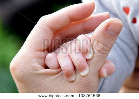 6 months old baby hand funny mother father holding nature