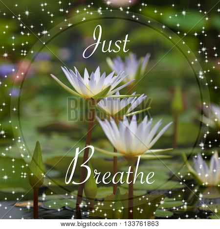 Just breathe words - on lotus background