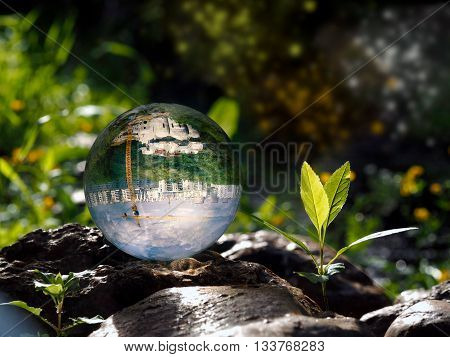 Ball on the rocks. Plant with green leaves. In the bowl of a reflection of the city, construction, crane. Concept - urban environment, housing, nature protection