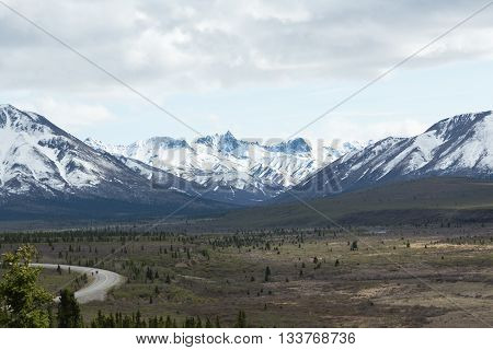 The Denali Park Road winds past snowcapped mountains