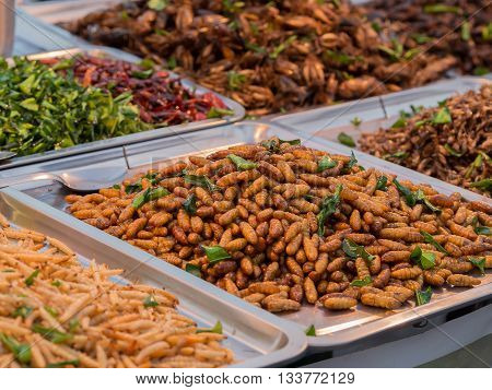 Fried insects. Exotic Asian food. Fried worms and locust. Local snack street food in Thailand.