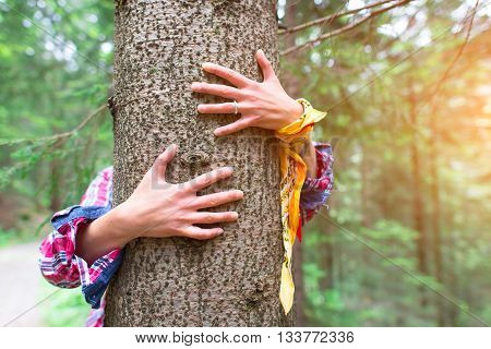 Tree hugging. Woman hugging a tree love nature concept