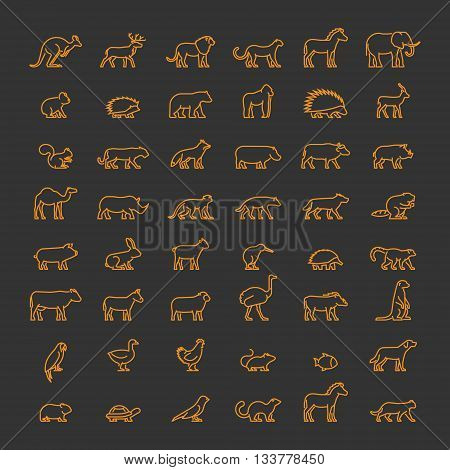 Line set of silhouettes of domestic and wild animals. Vector pets and farm animals. Line icon kangaroos meerkat warthog chicken bear leopard kiwi lemur and others.