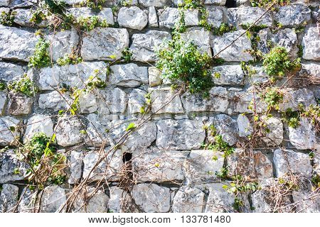 stone wall as a team everyone trust in everyone