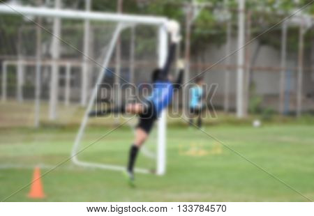 blurry,Goalkeeper in action playing football, defend (soccer)