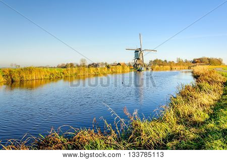 Picturesque and colorful polder landscape in the Netherlands with an historic windmill next to water on a sunny day in the fall season.