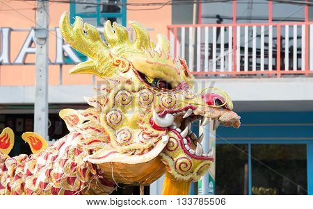Chinese Golden Dragon Celebrate Chinese New Year