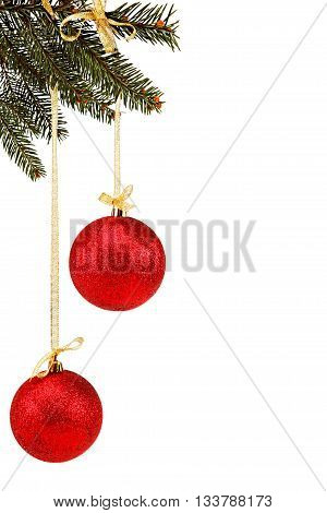 Christmas balls on fir branch isolated on the white background.