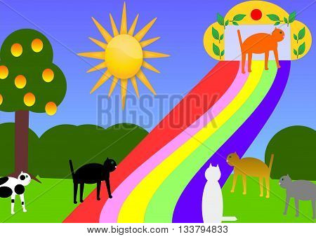 The famous rainbow bridge, when one of our lovely pets are gone. The image shows some cats, some are waiting for to go on the rainbow bridge, one cat steps over the rainbow bridge into cat heaven. It is a sunny day, a green meadow, an tree with apples and