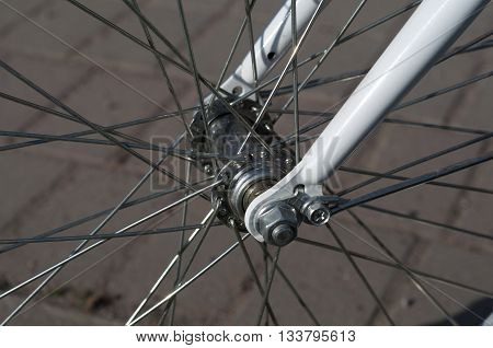 Front wheel of the bike. Bicycle hub. Closeup of a bicycle wheel. Horizontal format.