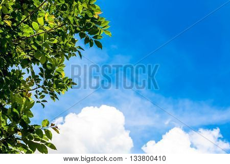 Clear blue sky as background sky cloud wall paper sunshine day pastel sky wallpaper