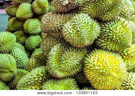 Durian fruit King of fruits Southeast Asia as the