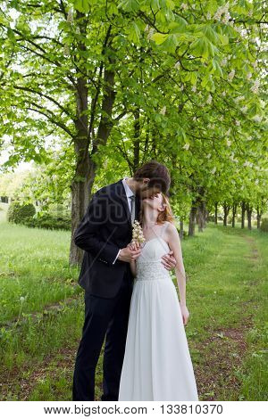 Wedding kiss the bride and groom in the park chestnuts