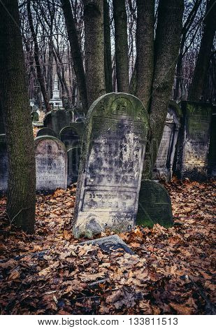 Warsaw Poland - November 29 2015. Old graves on Jewish Cemetery in Warsaw
