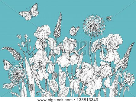 Hand drawn line illustration with iris wildflowers and insects. Black and white doodle wild flowers bees and butterflies on blue background. Floral elements for decoration. Vector sketch.